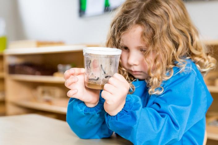 Girl looking at caterpillars